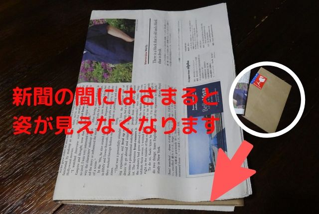 エミュール入浴剤ミネラルバスパウダー梱包がコンパクトなため新聞に隠れてしまう